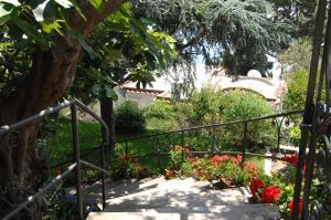 Casa Augusto B&B, Bed and Breakfasts  Capri - big - 30