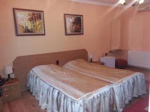 Family Hotel Silvestar, Отели  Велико-Тырново - big - 5