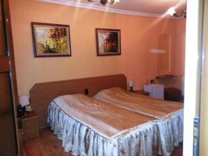 Family Hotel Silvestar, Отели  Велико-Тырново - big - 11