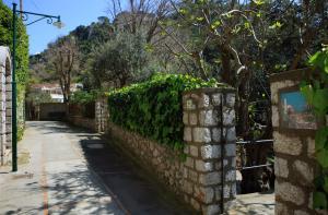 Casa Augusto B&B, Bed and breakfasts  Capri - big - 31