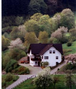 Ferienwohnung Bäumner, Apartmány  Bad Berleburg - big - 54