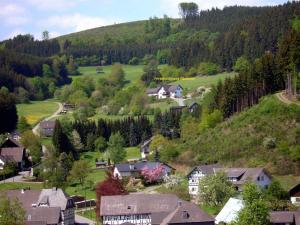 Ferienwohnung Bäumner, Apartmány  Bad Berleburg - big - 75