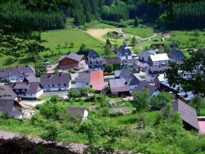 Ferienwohnung Bäumner, Apartmány  Bad Berleburg - big - 74