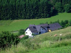 Ferienwohnung Bäumner, Апартаменты  Bad Berleburg - big - 60