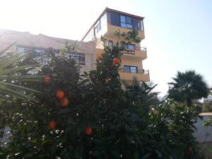 Murshed Motel