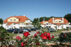 Vineta Ferienpark Usedom, Apartments  Ostseebad Koserow - big - 23