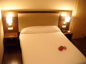 Balneario Elgorriaga, Hotely  Elgorriaga - big - 4