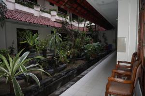 Hotel Matahari, Hotel  Yogyakarta - big - 11