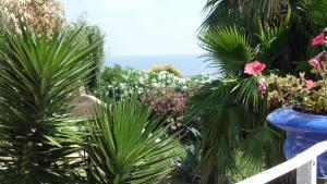 Villa Morosi, Apartments  Favone - big - 34