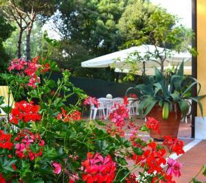 Hotel Villa Fiorisella, Szállodák  Marina di Massa - big - 36