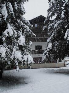 Casa Alpina Dobbiaco, Vendégházak  Dobbiaco - big - 8