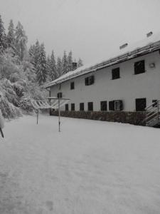 Casa Alpina Dobbiaco, Penziony  Dobbiaco - big - 7