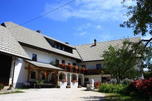 Apartments and Rooms Susnik