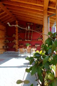 B&B Gregory House, Bed and Breakfasts  Treviso - big - 30