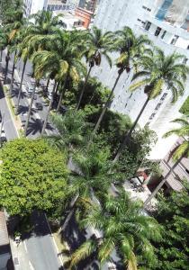 Praça da Liberdade Hotel, Отели  Белу-Оризонти - big - 32