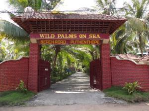 Wild Palms on Sea