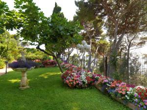 Hotel Villa Brunella, Отели  Капри - big - 32