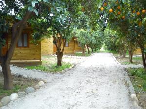 Yesil Bahce Bungalow - Ahsap Evler