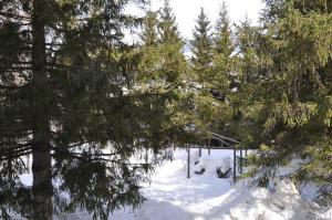 Casa Alpina Dobbiaco, Penziony  Dobbiaco - big - 15