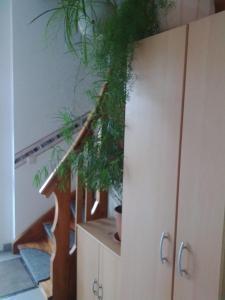 Gästewohnung Mutschlena, Apartments  Krostitz - big - 19