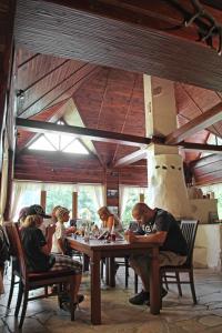 Penzion Energetik, Guest houses  Demanovska Dolina - big - 50