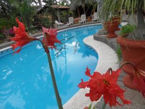 Casa Virgilios B&B, Bed & Breakfast  Nuevo Vallarta  - big - 27