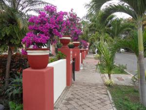 Casa Virgilios B&B, Bed & Breakfast  Nuevo Vallarta  - big - 28