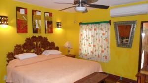 Casa Virgilios B&B, Bed & Breakfast  Nuevo Vallarta  - big - 5