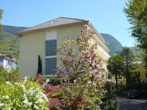 Hotel Zima - AbcAlberghi.com