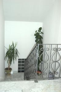 Guesthouse Hortenzija, Apartmanok  Mostar - big - 8