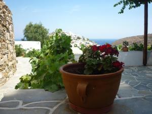 Agnanti, Guest houses  Kastron - big - 35