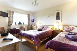 Wayside, Bed and breakfasts  Norwich - big - 7