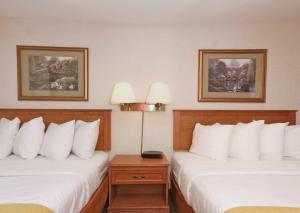 Quality Inn Saint Cloud, Отели  Saint Cloud - big - 9