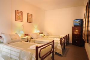 Hotel Salerno, Отели  Вилья-Карлос-Пас - big - 2