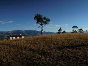 Pucara B&B and Spanish School, Lodges  Otavalo - big - 18