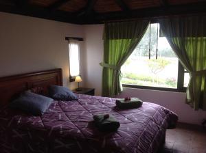 Pucara B&B and Spanish School, Lodges  Otavalo - big - 2