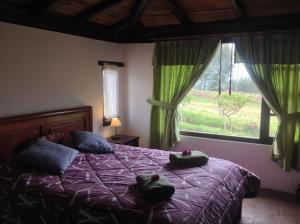 Pucara B&B and Spanish School, Lodges  Otavalo - big - 26