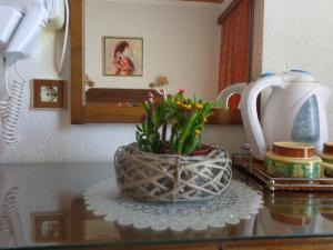 Angela Hotel, Szállodák  Ajía Marína - big - 20