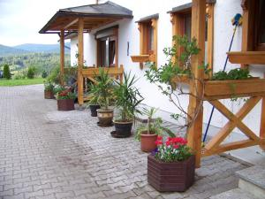 Gästehaus Rachelblick, Apartments  Frauenau - big - 44