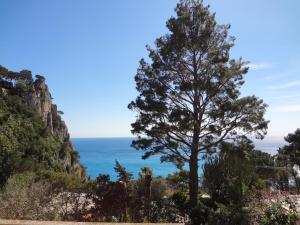 Casa Augusto B&B, Bed and breakfasts  Capri - big - 29
