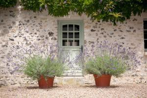 Chambres d'Hôtes Clos de Mondetour, Bed & Breakfasts  Fontaine-sous-Jouy - big - 33