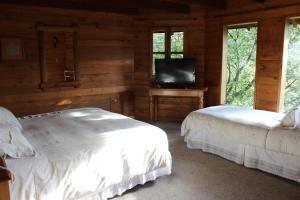 Triple Room 3-single beds
