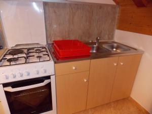 Apartments Smirnov, Appartamenti  Drežnik Grad - big - 18