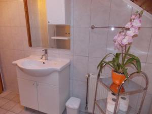 Apartments Smirnov, Appartamenti  Drežnik Grad - big - 19