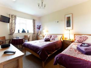 Wayside, Bed and Breakfasts  Norwich - big - 14