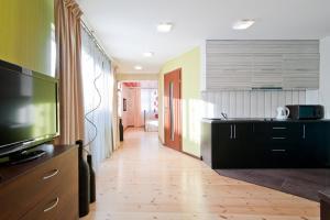 Abariaus Apartamentai, Ferienwohnungen  Druskininkai - big - 6