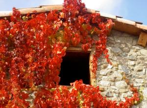 Casa Rural Cal Rei, Vidiecke domy  Lles - big - 26