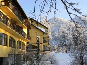 Aparthotel Casa Viorel, Apartmánové hotely  Poiana Brasov - big - 33