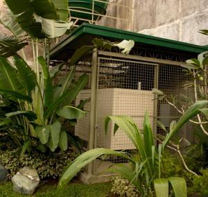 Happy Turtle Hostel, Хостелы  Манила - big - 9