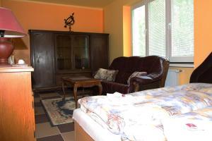 Villa Anastazis - Penzion Eden, Guest houses  Karlovy Vary - big - 29